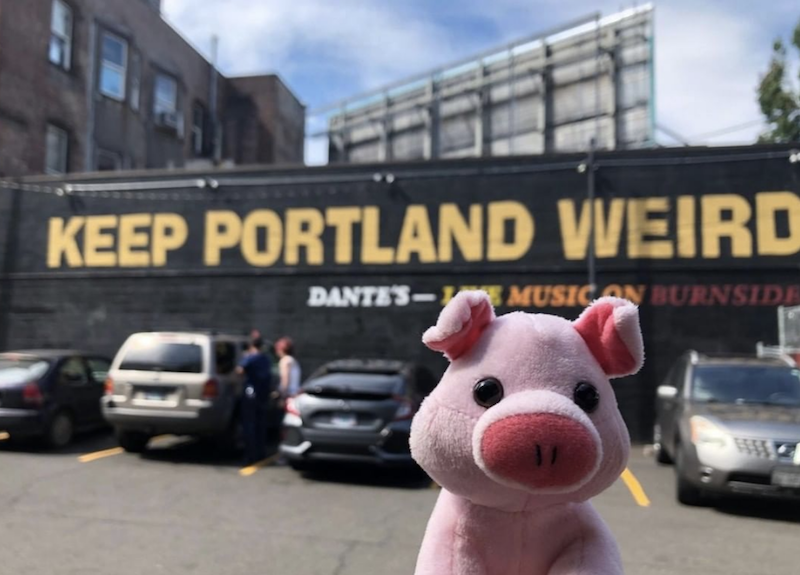 Go Anywhere With the Pig: 2019 Edition